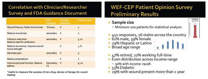 Wound Care Expert/FDA - Clinical Endpoint Project