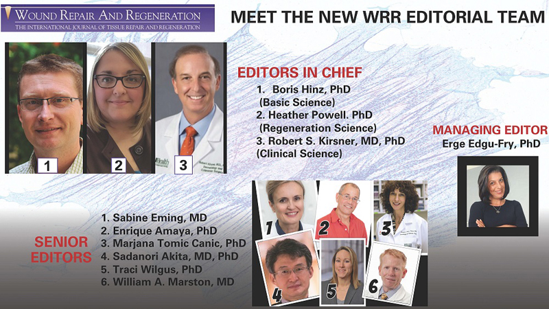 Wound Repair and Regeneration (WRR) Editorial Team